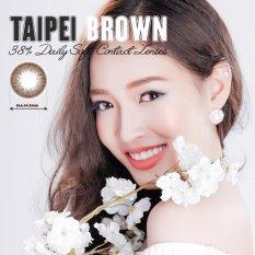 Hình ảnh Kính Áp Tròng Màu Dùng 1 Ngày Eye Secret - Taipei Brown (Nâu)