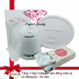 Giá Bán May Lam Mặt Nạ Trai Cay Tự Động Kết Hợp Xong Hơi 2In1 Tặng 1 Hộp Collagen Malaysia 24 Vien Nguyên