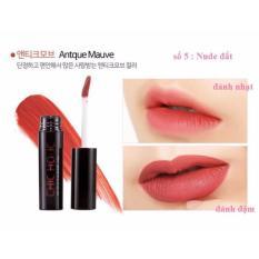 Son Kem Li Chic Holic Long Lasting Fix Lip Lacquer 4 5Ml Antique Mauve Sắc Nau Đỏ Mới Lạ Red Chic Holic Chiết Khấu 40