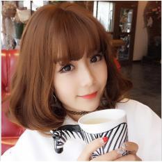[TẶNG KÈM LƯỚI] Tóc giả nữ nguyên đầu sợi tơ Hàn Quốc CÓ DA ĐẦU - TG2560 ( NÂU VÀNG Y HÌNH )