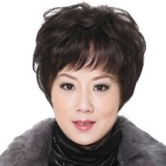 Tóc giả nữ trung niên Hàn Quốc cao cấp có da đầu -  TG7711 ( NÂU ĐẬM NHƯ HÌNH ) giá rẻ