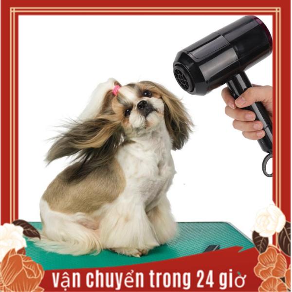 Công Suất Cao 220V Tiếng Ồn Thấp Họa Tiết Cún Cưng Máy Sấy Lông Mèo Nóng/Lạnh Điều Chỉnh Tốc Độ Gió