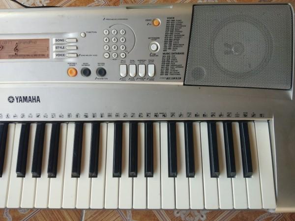 đàn organ yamha psr313.