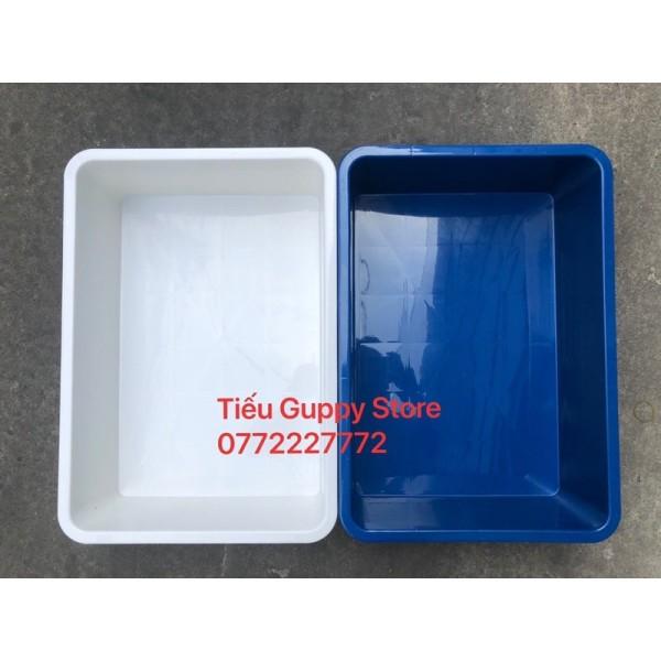 [HCM]Khay Nhựa Nuôi Cá hình chữ nhật 16 lít 35x50x13cm