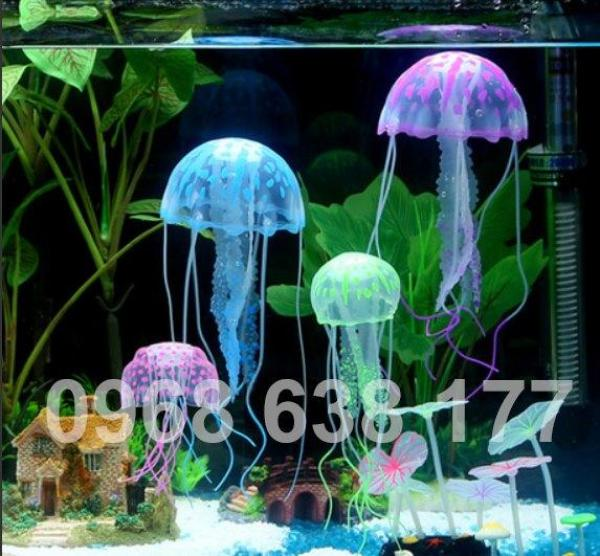 Sứa Dạ Quang  - Phụ kiện trang trí hồ cá, thủy sinh, trang trí phong cảnh