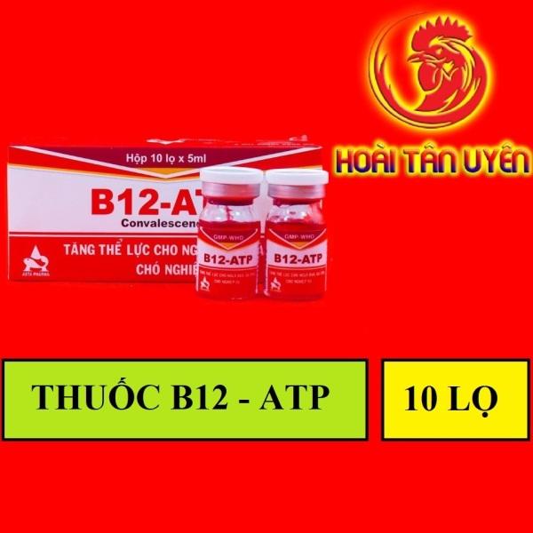 B12 ATP TĂNG BO, LÌ ĐÒN HỘP 10 LỌ CHO GÀ ĐÁ