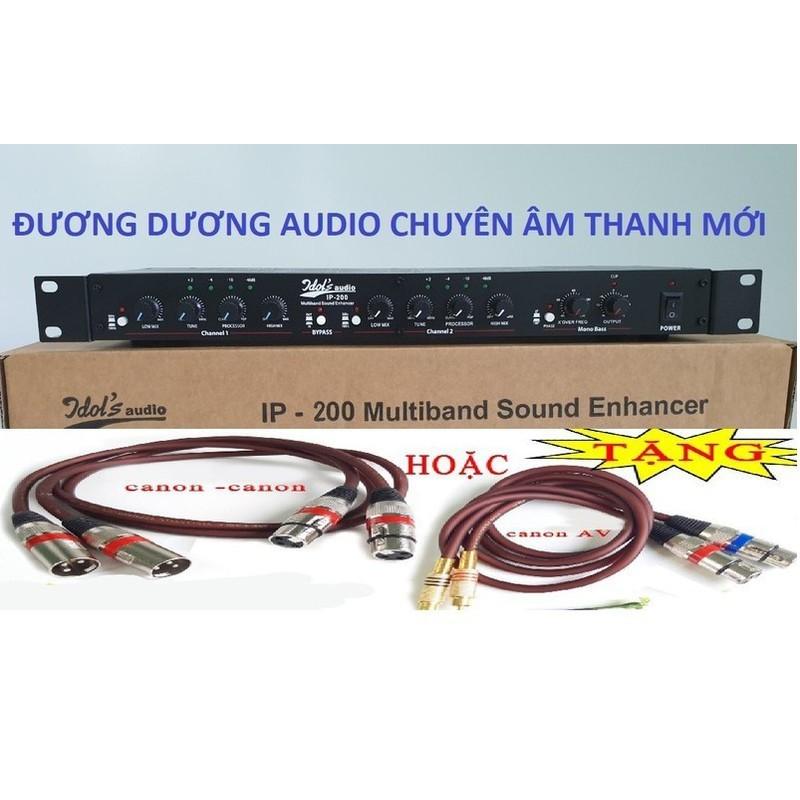 Máy nâng tiếng karaoke IDOL IP 200 chuyên nghiệp