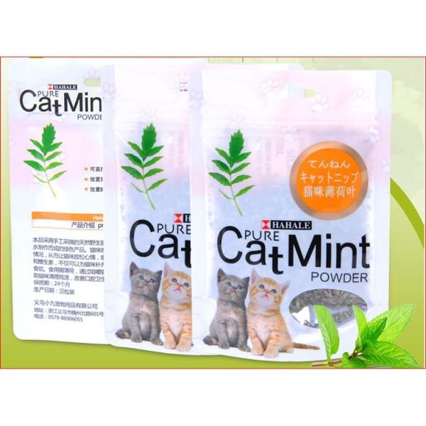 catnip cho mèo - Cỏ bạc hà