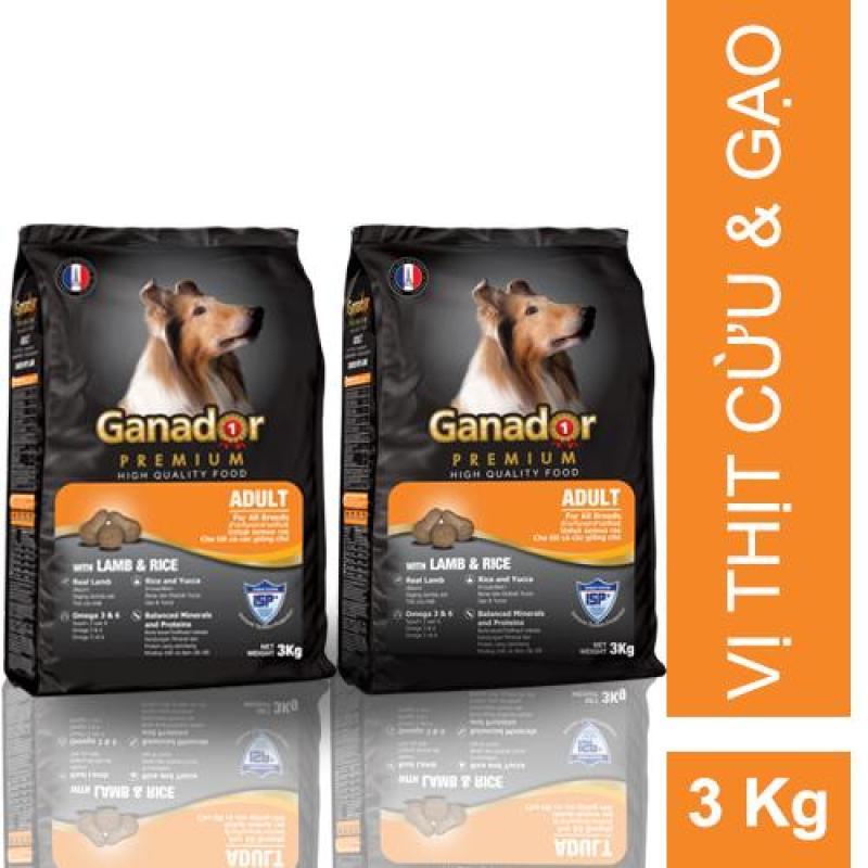 Combo 2 gói thức ăn cho chó trưởng thành Ganador vị thịt cừu và gạo Adult Lamb and Rice 3kg