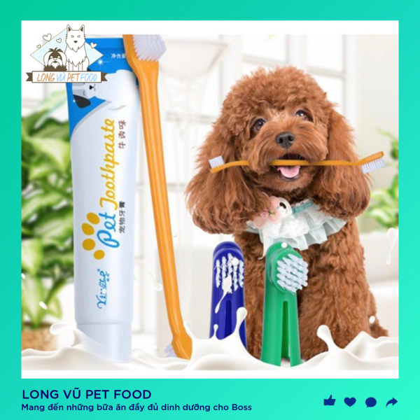 Bộ bàn chải và kem đánh răng chó mèo - Bàn chải đánh răng cho chó mèo - Long Vũ Pet Food