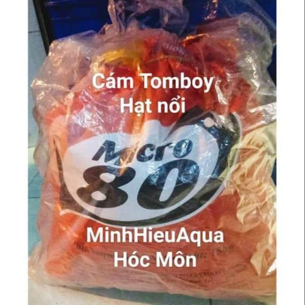 Cám Tomboy hạt nổi Micro 80 - nửa kí