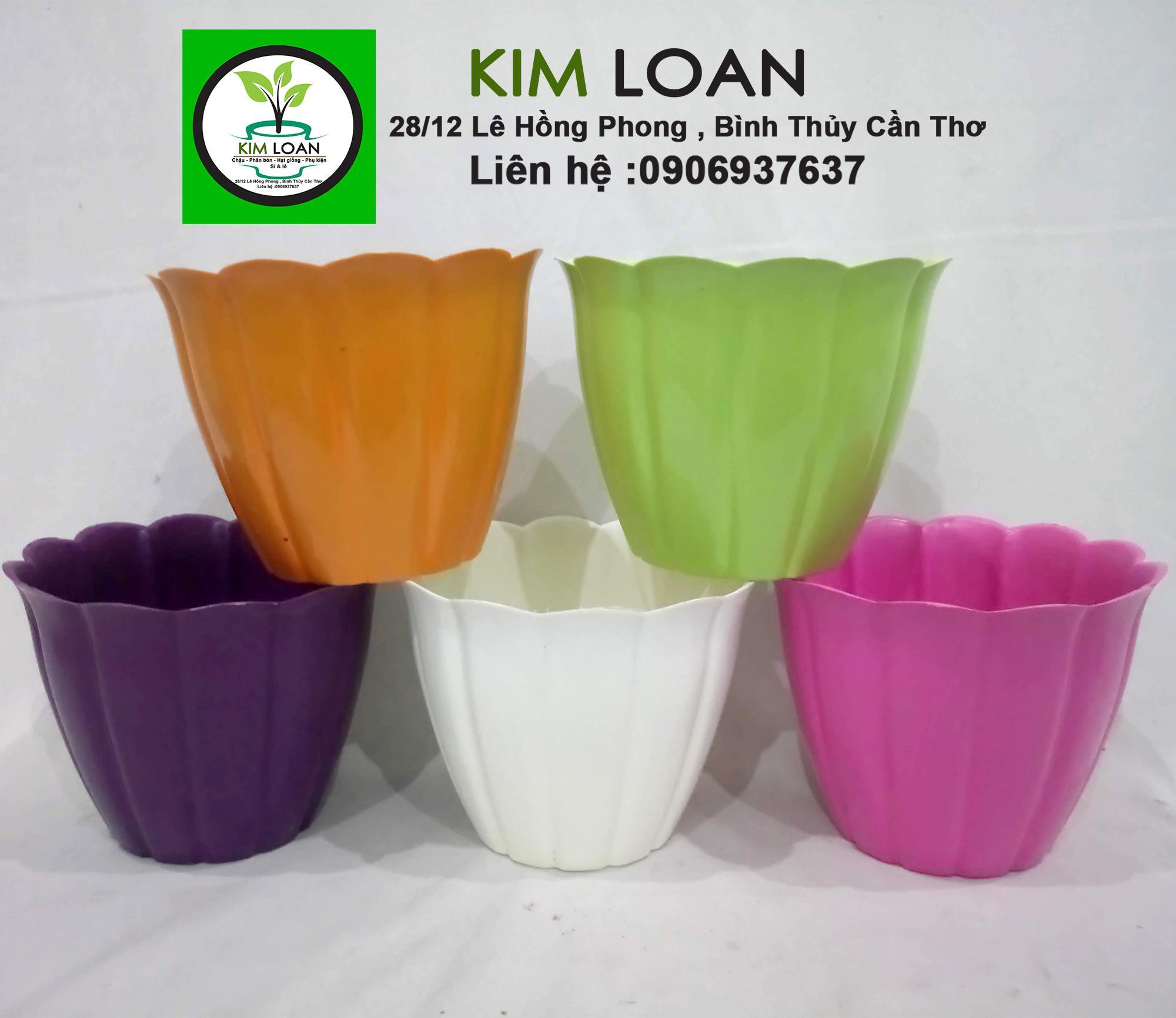 Combo 10 chậu nhựa tròn vành cánh hoa 13x10cm (LH để chọn màu)