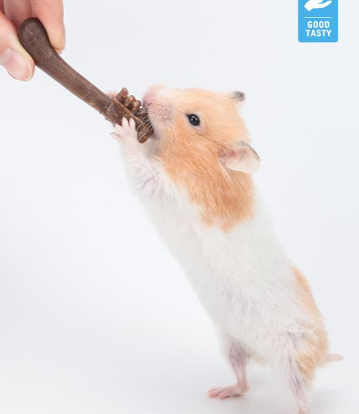 Snack bàn chải cho hamster/sóc/đuôi mập/rat tương tự như cá sấu mài răng