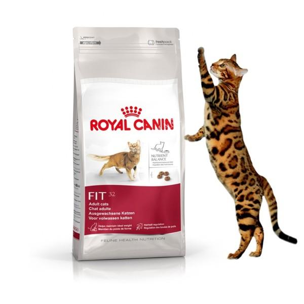 Thức Ăn Cho Mèo Royal Canin Fit 32 15 Kg