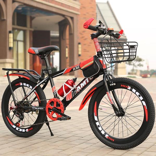 Mua xe đạp thể thao 20 inh cho bé trai học Tiểu học- TẶNG KÈM GIỎ XE VÀ GÁCBAGA