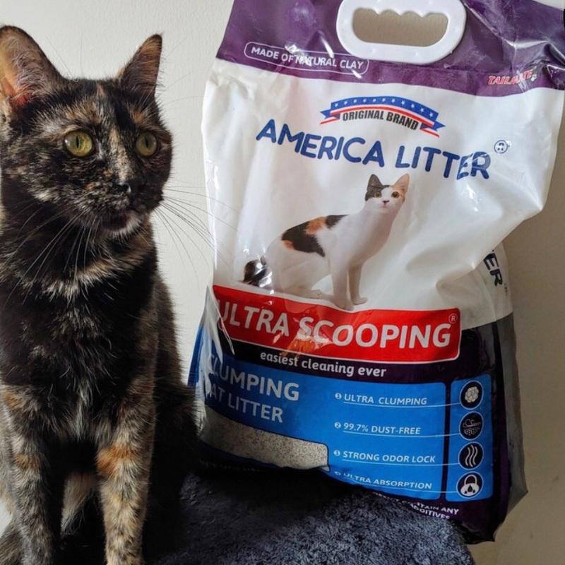 Cát vệ sinh cho mèo America Litter, hàng nhập khẩu
