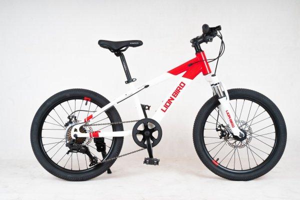 Phân phối xe đạp thể thao trẻ em lionbird Boulder 20