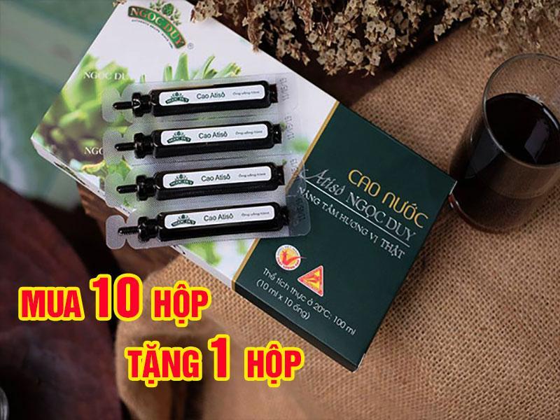 Mua 10 tặng 1 Cao Nước Atiso Ngọc Duy hộp 10 ống