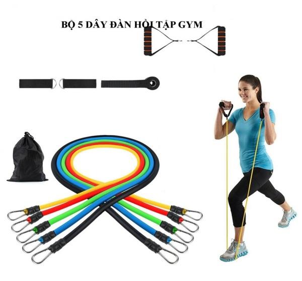 Dây Đàn Hồi Tập Gym, Dây Kháng Lực, Bộ 5 Dây Đàn Hồi Tiêu Chuẩn Quốc Tế, Chất Liệu 100% Cao Su, Dây Cao Su Đàn Hồi Tập Thể Thao