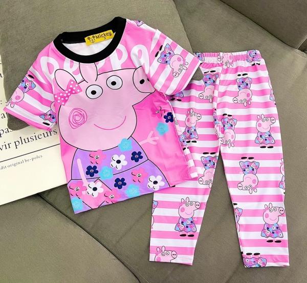 Giá bán Bộ tay ngắn quần dài thun lạnh 100% in hình hoạt hình siêu đẹp cho bé gái size đại từ 10 đến 40kg