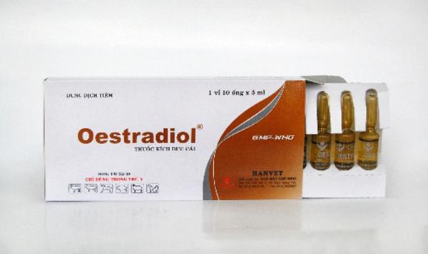 [Giá rẻ] Oestradiol 5 ml chuyên dùng cho gia súc, trâu, bò, lợn, dê, chó, thỏ