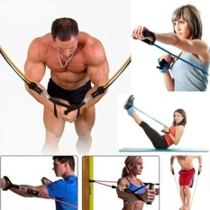 Hình ảnh 11Pcs Exercise Latex Resistance Bands Muscle Rope Tube Yoga Fitness - intl