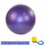 Giá Bán Bong Tập Yoga Gymball Cao Cấp Co Gai 65Cm Oem Nguyên