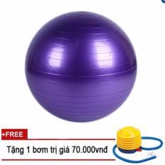 Bán Bong Tập Yoga Loại Trơn Tim Dk 65Cm Tps Nguyên