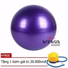 Bong Tập Yoga Trơn 75Cm Viva Sport Hồ Chí Minh