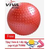Mua Bong Tập Yoga Gai 75Cm Viva Sport Tặng Kem 1 Day Đai Tập Yoga Mới Nhất
