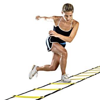 Bền 5 rung 10 Chân 2.7 m Sự Nhanh Nhẹn Thang cho Bóng Đá Luyện Tập Tốc Độ