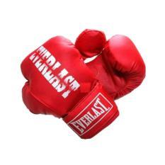 Ôn Tập Găng Đấm Boxing Everlast Phucthanhsport Đỏ