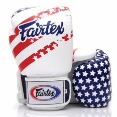 Bán Mua Găng Tay Fairtex Cờ Mỹ Usa Flag Boxing Gloves 12Oz