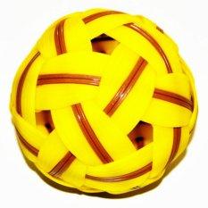 Hình ảnh Bánh nhựa tiêu chuẩn thể thao dành cho nam Sepak Takraw-quốc tế