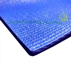 Bán Thảm tập yoga bình thạnh GreenNetworks có túi (xanh) + Tặng chai xịt
