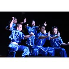 Hình ảnh Võ phục quần áo Wushu Taolu lụa tơ tằm