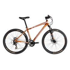 Xe đạp ATOM SPORT 2014 (Nâu)