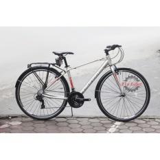 Mua Xe đạp đường phố California City 300 - Thương Hiệu Mỹ - Khung Hợp Kim Nhôm Nhẹ - Bộ Chuyển Động Shimano Tourney 24 Tốc Độ