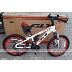 xe đạp thể thao GALAXY MT219 20″ 2018 (6-11 tuổi)