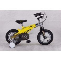 Giá bán xe đạp trẻ em LANQ FD1640 16″ (4-8 tuổi)