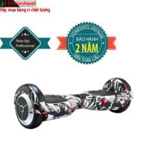 Hình ảnh xe điện cân bằng Homesheel s6 (USA)