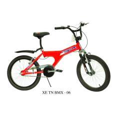 Xe TN BMX 06