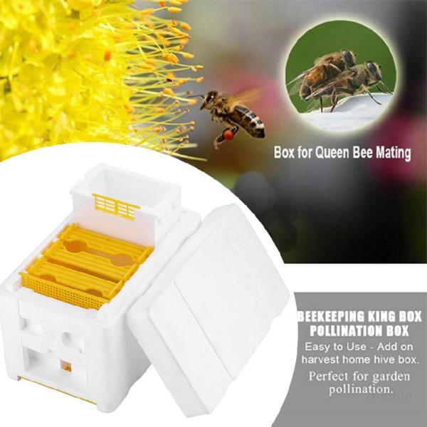 thu hoạch ong tổ ong nuôi ong hộp thụ phấn hộp công cụ nuôi ong hoàn hảo cho thụ phấn vườn 【Free Shipping】