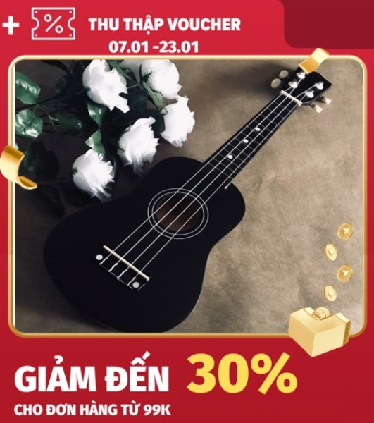 Đàn Ukulele Concert Gỗ Sơn Màu