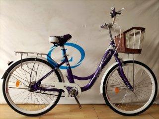 Xe đạp 24 inch nữ DINDU xe đạp nữ cáo 1m4 đến 1m6 thumbnail