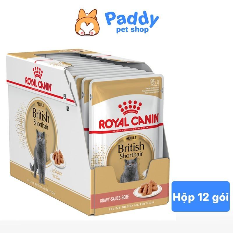 Pate Cho Mèo Anh Lông Ngắn Lớn Royal Canin British Shorthair - Hộp 12 Gói