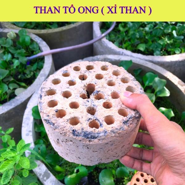 1kg XỈ THAN TỔ ONG dùng trộn đất trồng sen đá , lọc nước hồ cá gói