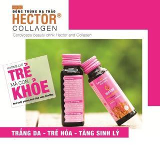Nước Đông Trùng Hạ Thảo Kết Hợp Collagen Hector Collagen 10 chai thumbnail
