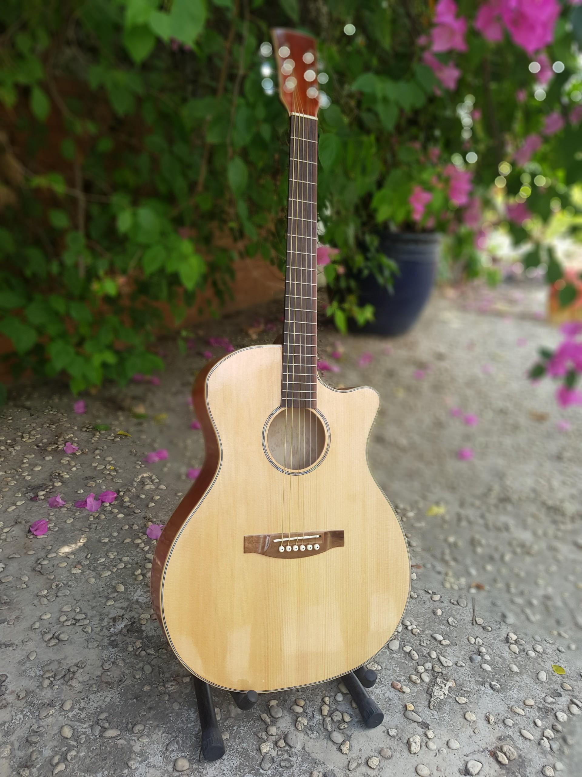 Guitar Acoustic HCM 9A29 + Tặng Bao đựng, dây, phím, sách học