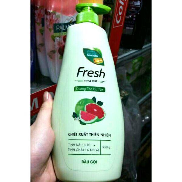 Dầu gội Fresh tinh dầu bưởi, tinh chất lá nem 550g giá rẻ